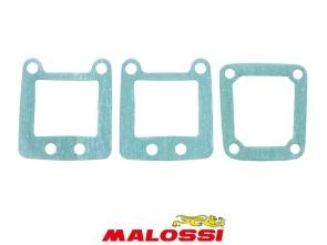 Dichtsatz Malossi 4-Klappmembrane