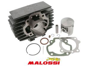 Malossi Zylinderkit 45.5 mm Honda Camino