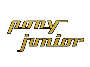 Aufkleber Pony Junior gold Sachs