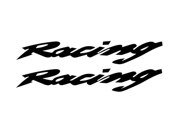 Paar Racing Kleber schwarz