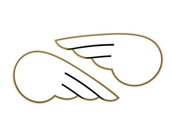DKW Flügel weiss Paar