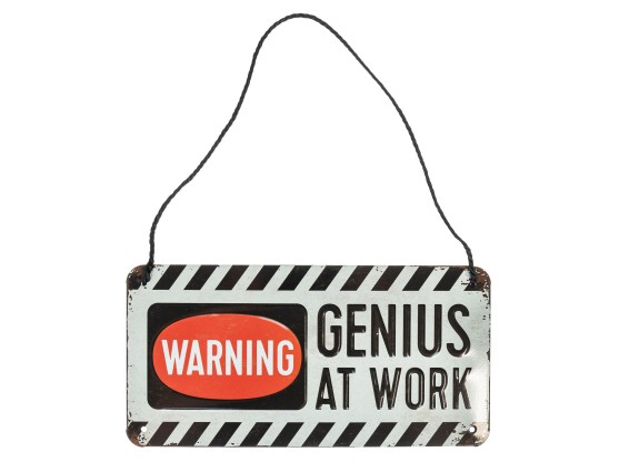 Blechschild «Warning Genius at work» 20 x 10 cm